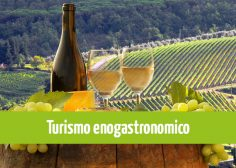 https://www.fmtslavoro.it/wp-content/uploads/2020/03/News-Sito_Turismo-enogastronomico-236x168.jpg