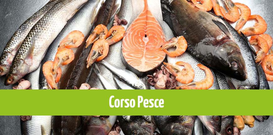 News-Sito_corso_pesce