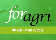 https://www.fmtslavoro.it/wp-content/uploads/2020/03/avvisoFOR.AGRI_news-236x168.jpg