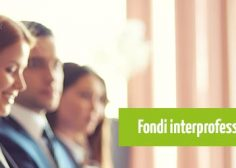 https://www.fmtslavoro.it/wp-content/uploads/2020/03/fondimpresa-fondi-interprofessionali-risorse-236x168.jpg