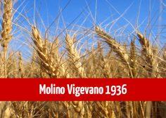 https://www.fmtslavoro.it/wp-content/uploads/2020/03/news_sito_Molino-Vigevano-1936-236x168.jpg