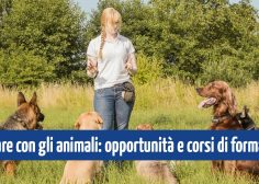 https://www.fmtslavoro.it/wp-content/uploads/2020/03/og_lavorare_animali-236x168.jpg