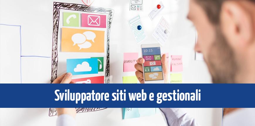 Sviluppatore siti web e gestionali